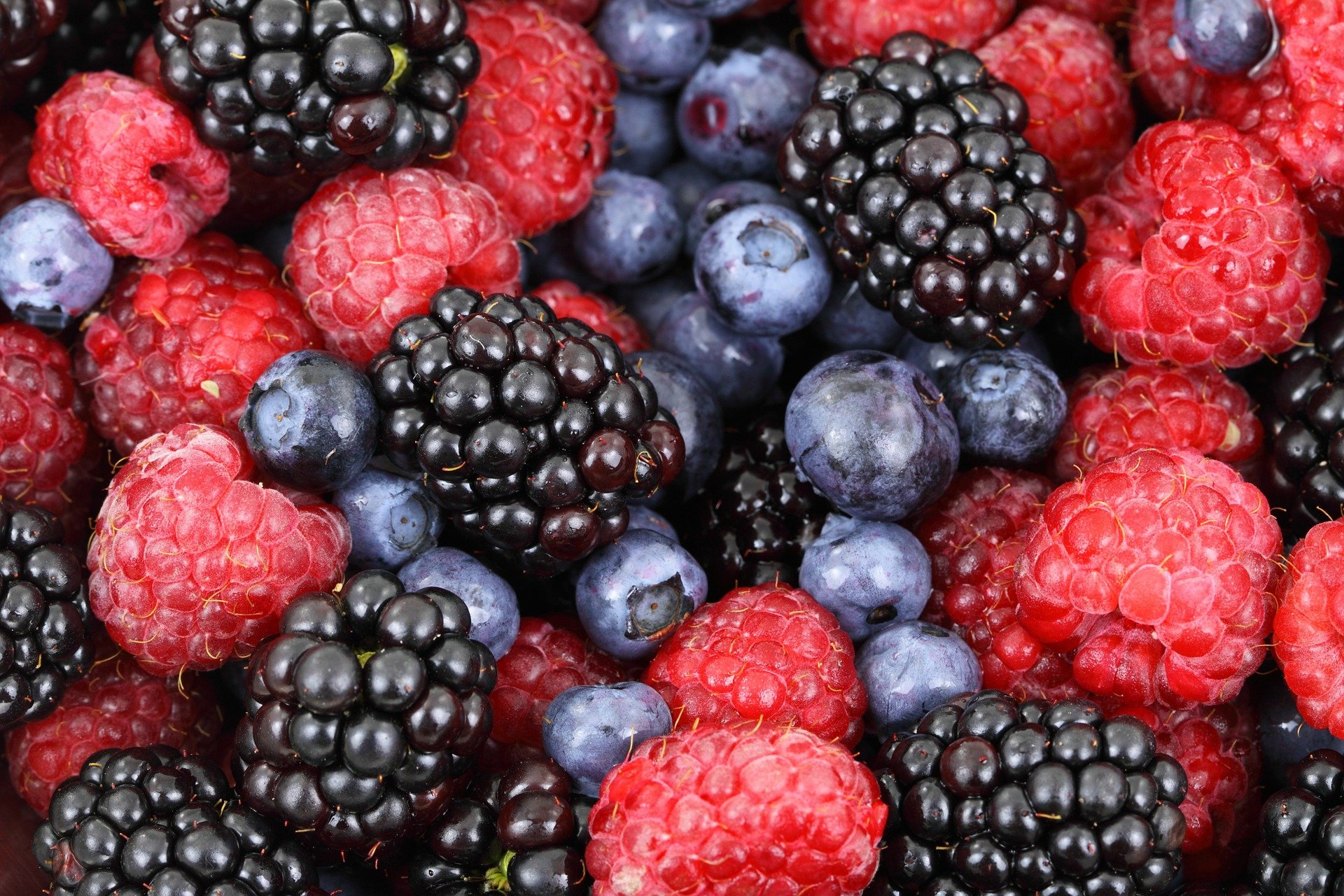 Close up of mixed berries for National Berry Month