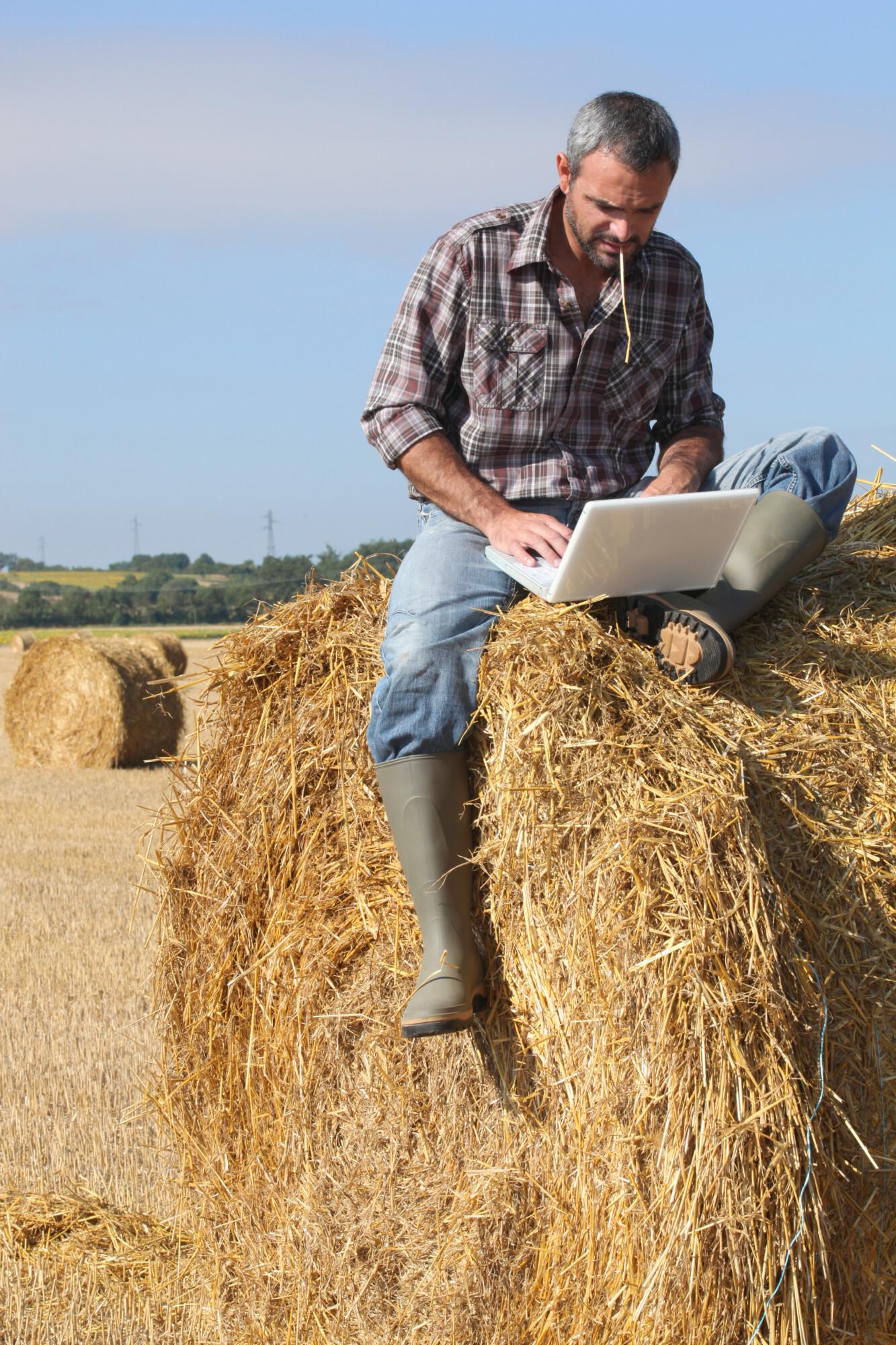 rural internet connectivity