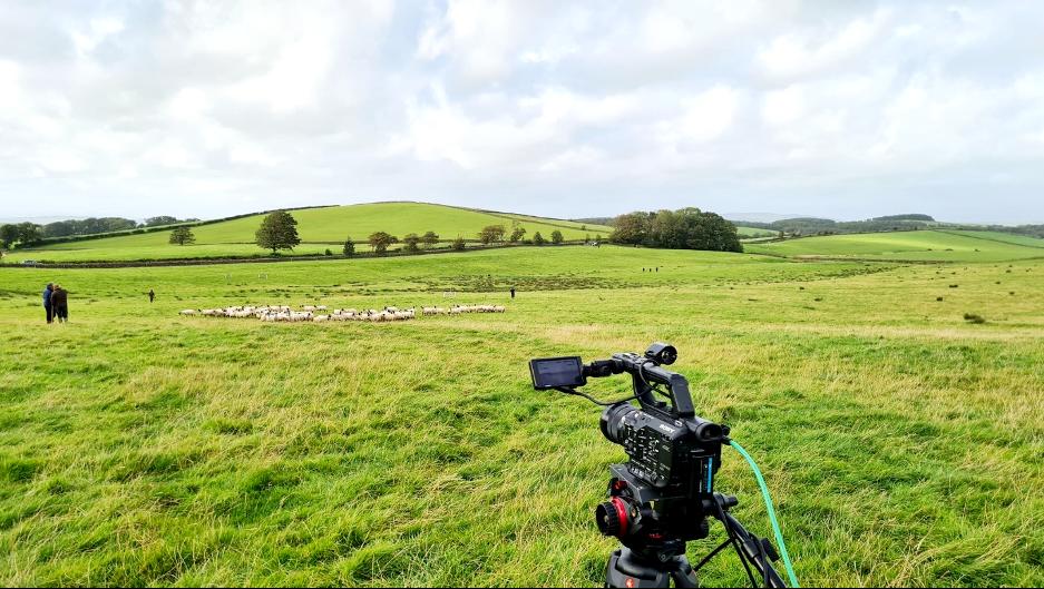 Gigabox filming sheep dog trials