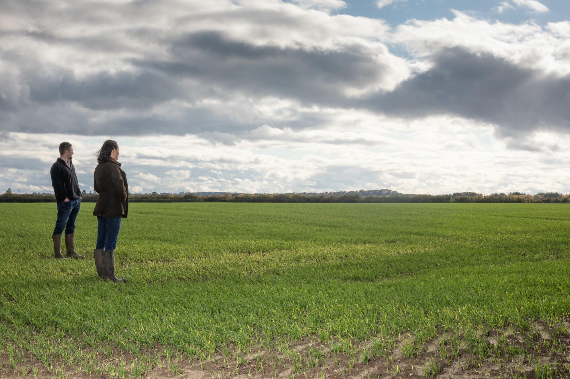 RABI two farming people in field