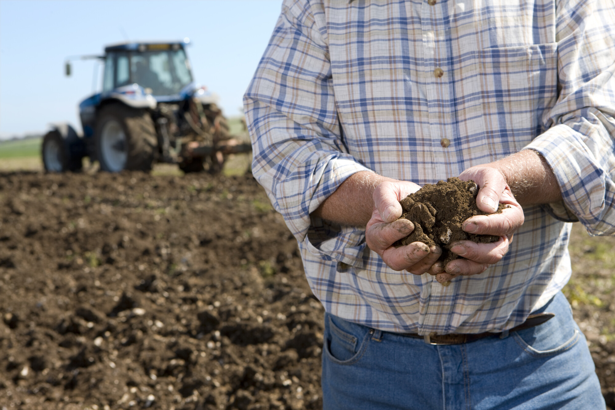How big is the black-grass problem and can it ever be controlled?